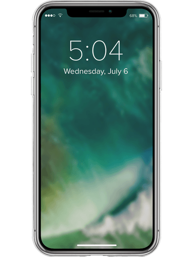 XQISIT Flex Case iPhone 11 (transparent)