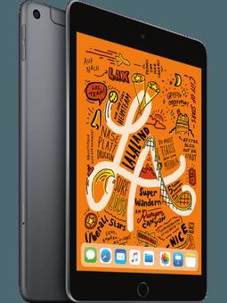 Apple iPad mini Wi-Fi+Cell (2019) 256GB Space Grau